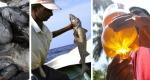 squalene-huile-foie-requins-dans-les-cosmetiques-enquete-blo