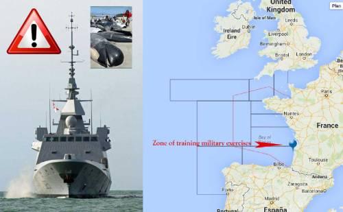 Sonars-Mimizan-fregate