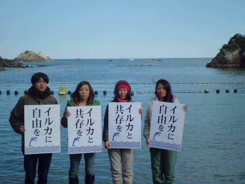 Voici pour ceux qui auraient tendance à faire l'amalgame entre le peuple japonais et une centaine de pêcheurs.