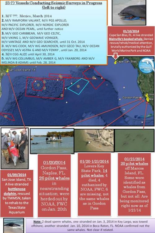 Map-SNM-Floride-01.2014