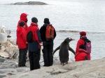 Touristes en Antarctique. SARAH DAWALIBI/AFP Évolution du nombre de touristes en Antarctique entre 1993 et 2008