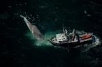 Une baleine bleue tuée par un bateau et examinée par des chercheurs de l'Université de l'Oregon, à bord de leur embarcation « Pacific Storm ». Crédit : Tire Nicklin, Minden Cuadros