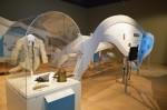 Des éléments de l'exposition Géants des océans: les baleines du Canada du Musée du fjord ont été adaptés par le Muséum d'histoires naturelles d'Orléans qui présentera du 15 octobre au 30 août l'exposition Baleines! Les cétacés des côtes canadiennes et françaises. Courtoisie.