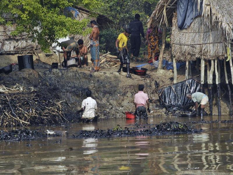 Déversement d'hydrocarbures: La mangrove menacée au Bangladesh