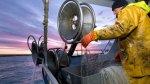 © Guillaume BONNEFONT - MaxPPPLa nouvelle réglementation inquiète les pêcheurs