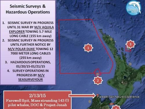 seismic-survey-map-NZ