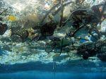 Les fragments de plastique sont très largement répandus dans les océans, menaçant tout la chaîne alimentaire marine. uncredited / AP