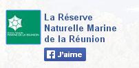 FB-reserve-Reunion