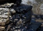 6info/AFP - Une deuxième marée noire touche les plages de Californie