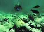 Un million de tonnes de produits chimiques polluent les fonds marins Photo DR