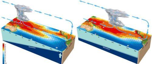Situation normale dans le Pacifique tropical (gauche) et sous El Niño (droite) - Source : Météo France
