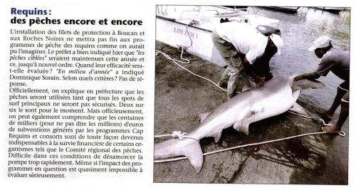 massacre-requins-reunion-business