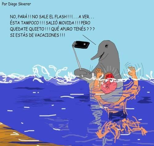 humour-noir-dauphin-Argentine