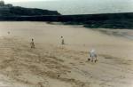 maree-noire-plage