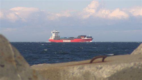 On s'inquiète de l'impact du bruit des navires sur le comportement des baleines.  Photo :  ICI Radio-Canada