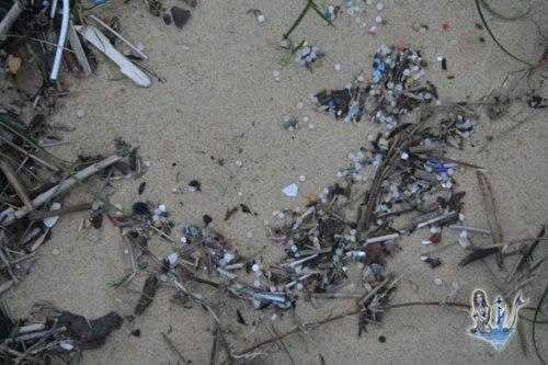 Granulés de plastique dans la laisse de mer, sur la berge sud du Courant de Mimizan, le 14 Février 2016.