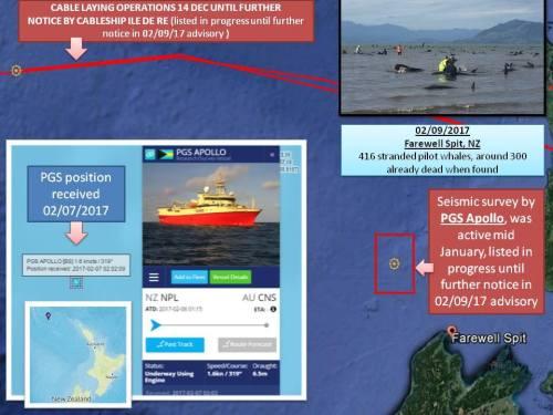 map-snm-mass-stranding-pilot-whales-nz